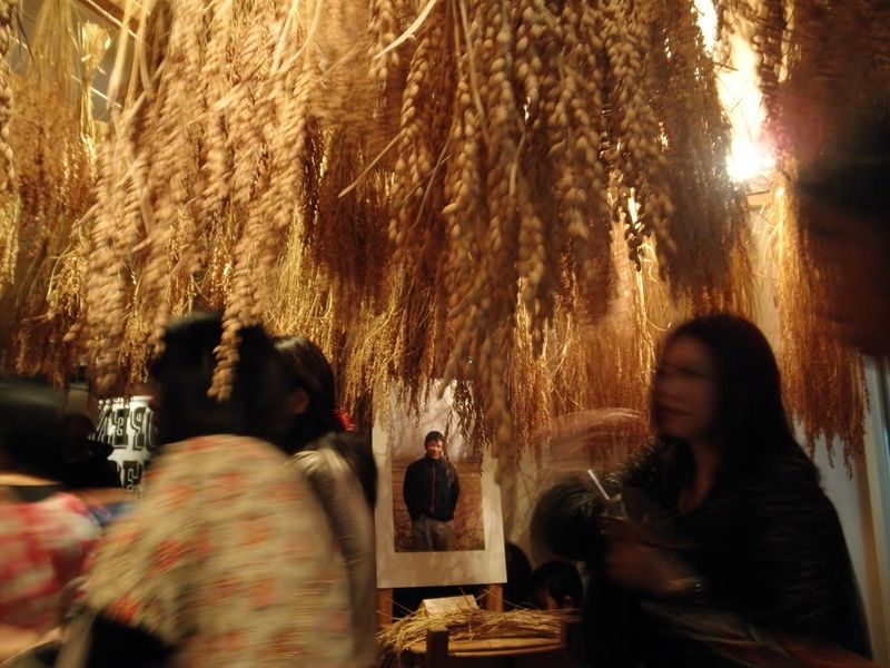Curtain of an ear of rice